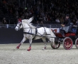 Equitana 2011 - Leon D`Or und Heinz Lottenburger