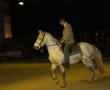 hund-und_pferd-2010-2