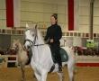 hund-und_pferd-2010-28