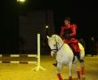 hund-und_pferd-2010-5
