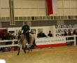 hund-und_pferd-2010-50