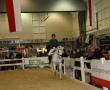 hund-und_pferd-2010-52