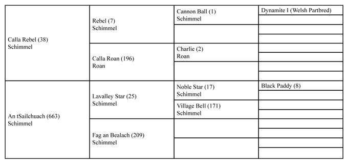 Strongbow PedNN