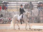 Teilnehmer 2015: Horseleap Bruno